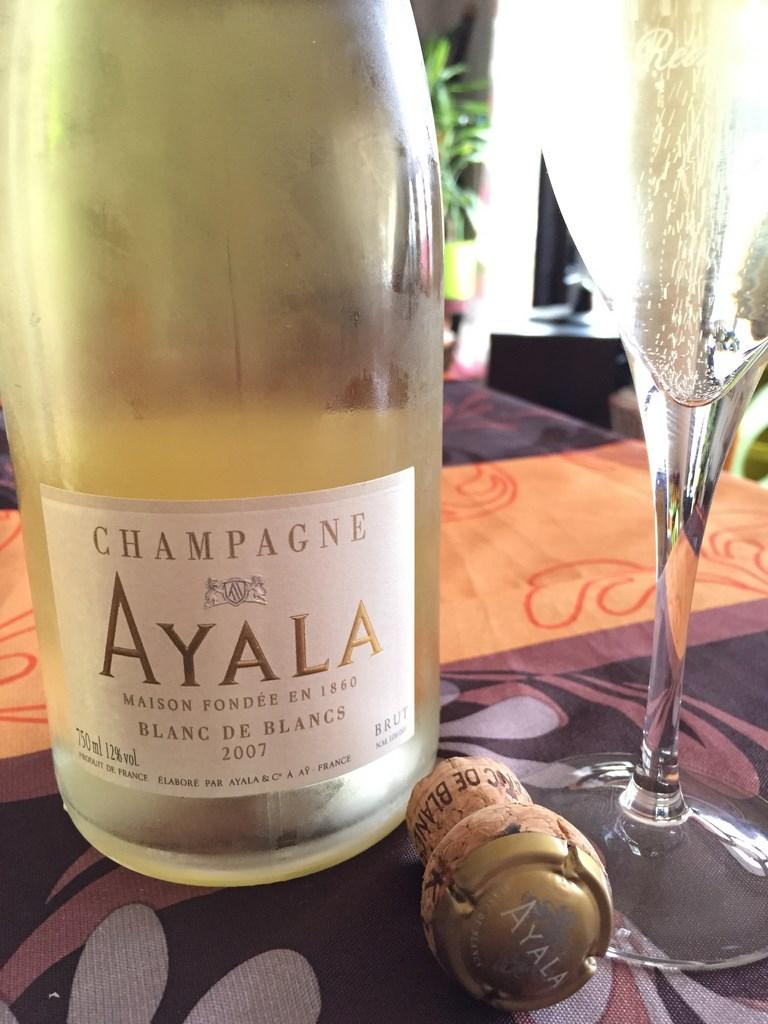Ayala_BdB_2007