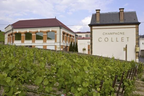 Vignoble_et_maison_Collet