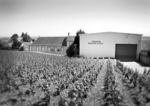 J'ai goûté pour vous … T.E.R. Noir – Champagne Philippe Gonet – Le Mesnil-sur-Oger